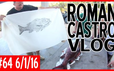 Vlog #64: Sea Sniper DVH Invitational Spearfishing Competition (Day 4)