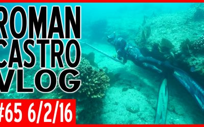 Vlog #65: Sea Sniper DVH Invitational Spearfishing Competition (Day 5)