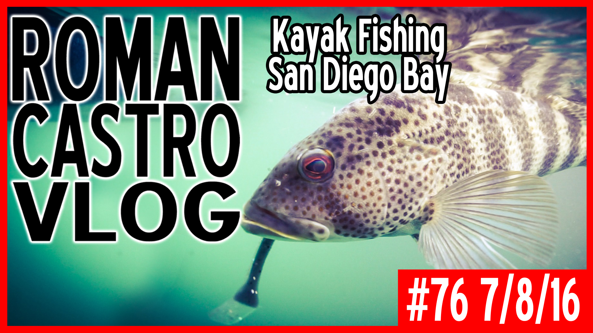 Kayak Bass Fishing San Diego Bay