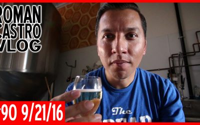 Vlog #90: Gandalf Drank Mead & So Can YOU [Golden Coast Mead]