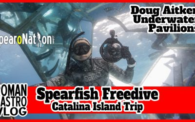 Breath Hold Freediving Doug Aitken Underwater Pavilions & Spearfishing: RC Travel Vlog #100